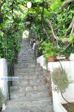 Myrtho apartments on the island of Andros | Greece  Photo 4 - Photo JustGreece.com