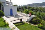 Myrtho apartments on the island of Andros | Greece  Photo 13 - Photo JustGreece.com