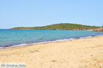 beach Kypri (Golden Beach) near Batsi | Island of Andros | Greece  Photo 001 - Photo JustGreece.com