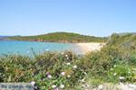 JustGreece.com beach Kypri (Golden Beach) near Batsi   Island of Andros   Greece  Photo 005 - Foto van JustGreece.com