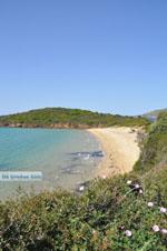 JustGreece.com beach Kypri (Golden Beach) near Batsi | Island of Andros | Greece  Photo 008 - Foto van JustGreece.com
