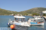 JustGreece.com The harbour of Gavrio | Island of Andros | Greece  | Photo 7 - Foto van JustGreece.com