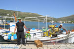 JustGreece.com The harbour of Gavrio   Island of Andros   Greece    Photo 10 - Foto van JustGreece.com