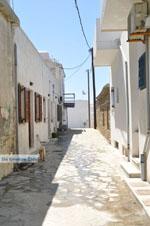 The harbour of Gavrio | Island of Andros | Greece  | Photo 18 - Photo JustGreece.com