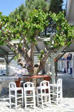 The harbour of Gavrio | Island of Andros | Greece  | Photo 29 - Photo JustGreece.com