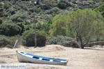 beach Fellos near Gavrio | Island of Andros | Greece  | Photo 5 - Photo JustGreece.com