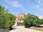 The weg to Volissos - Island of Chios - Photo JustGreece.com