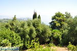 JustGreece.com Achillion | Gastouri Corfu | Ionian Islands | Greece  - Photo 36 - Foto van JustGreece.com