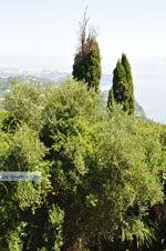 JustGreece.com Achillion | Gastouri Corfu | Ionian Islands | Greece  - Photo 37 - Foto van JustGreece.com