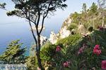 JustGreece.com Paleokastritsa (Palaiokastritsa) | Corfu | Ionian Islands | Greece  - Photo 19 - Foto van JustGreece.com