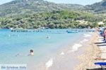 JustGreece.com Messonghi | Corfu | The Greek Fids - Photo 004 - Foto van JustGreece.com