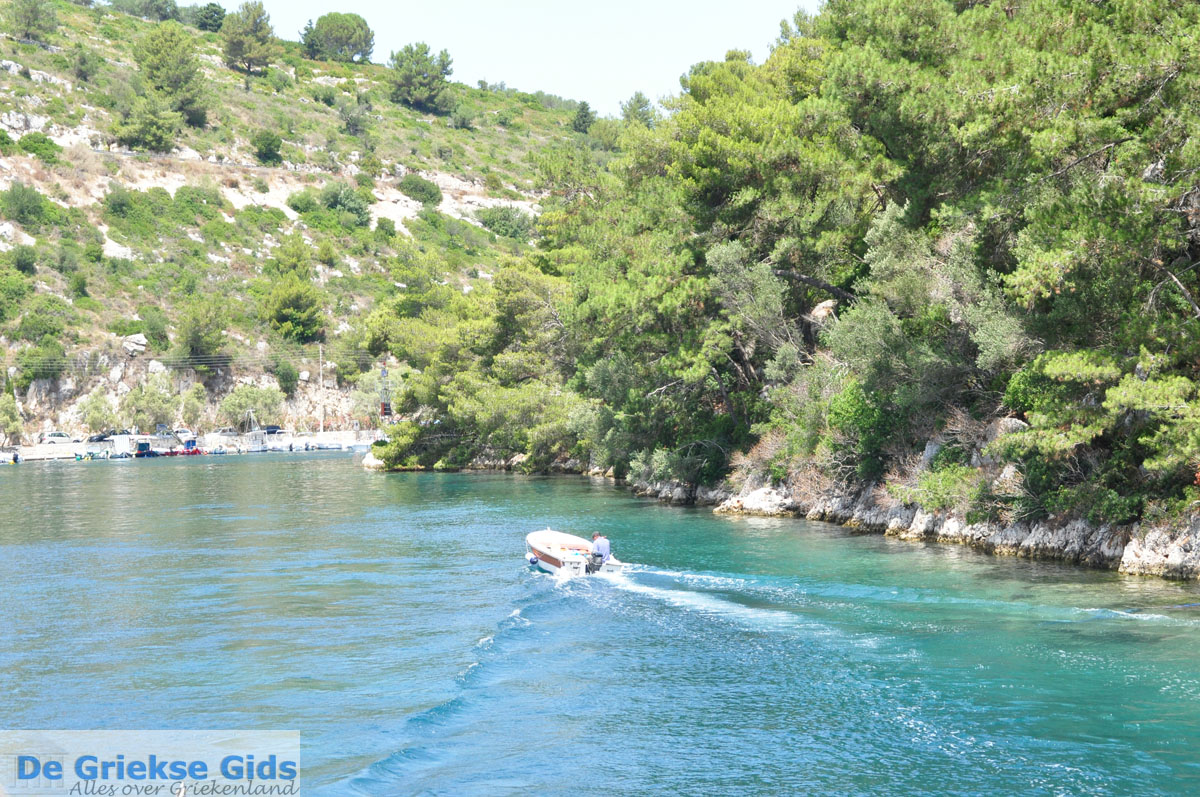 sea longos paxos - photo #27
