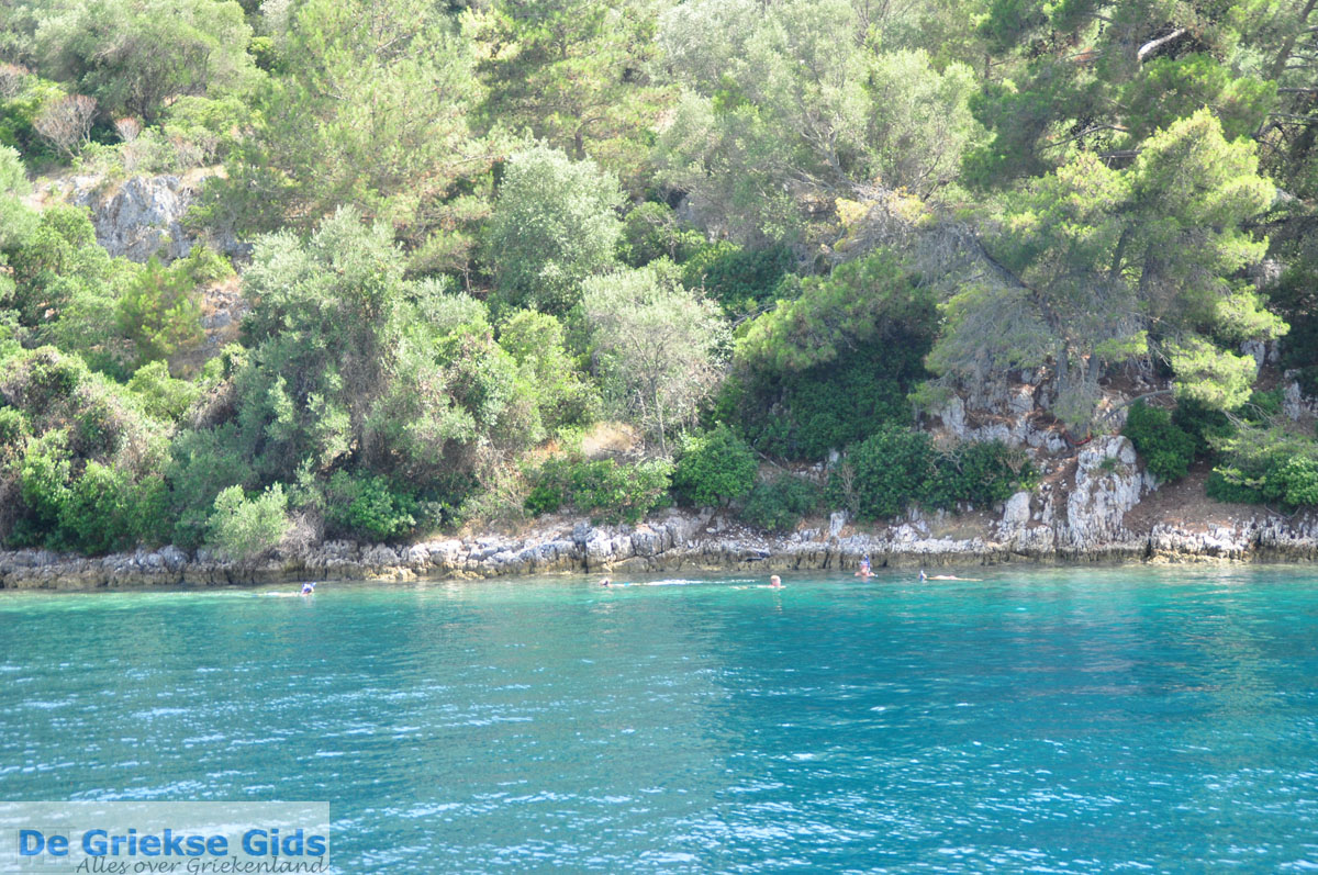sea longos paxos - photo #20