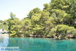 Gaios | Island of Paxos (Paxi) near Corfu | Ionian Islands | Greece  | Photo 011 - Photo JustGreece.com