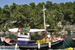 Gaios | Island of Paxos (Paxi) near Corfu | Ionian Islands | Greece  | Photo 094 - Photo JustGreece.com