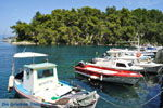 Gaios | Island of Paxos (Paxi) near Corfu | Ionian Islands | Greece  | Photo 098 - Photo JustGreece.com