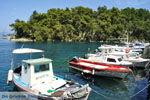 Gaios | Island of Paxos (Paxi) near Corfu | Ionian Islands | Greece  | Photo 098 - Photo JustGreece.com