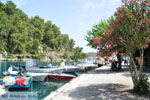 Gaios | Island of Paxos (Paxi) near Corfu | Ionian Islands | Greece  | Photo 100 - Photo JustGreece.com