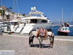 Island of Hydra Greece - Greece  Photo 35 - Photo JustGreece.com