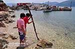 JustGreece.com Pisaetos - Ithaki - Ithaca - Photo 099 - Foto van JustGreece.com