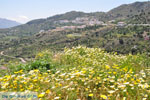 JustGreece.com Othos | Karpathos island | Dodecanese | Greece  Photo 002 - Foto van JustGreece.com