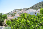 JustGreece.com Othos | Karpathos island | Dodecanese | Greece  Photo 007 - Foto van JustGreece.com