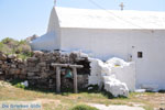 Arkasa (Arkassa) | Karpathos island | Dodecanese | Greece  010 - Photo JustGreece.com