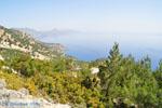 nature in the oosten of Karpathos | Greece  006 - Photo JustGreece.com