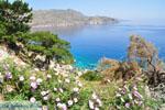 Apela Beach (Apella) | Karpathos island | Dodecanese | Greece  Photo 009 - Photo JustGreece.com