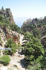 nature in the oosten of Karpathos | Greece  Photo 011 - Photo JustGreece.com