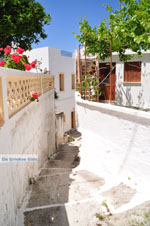 JustGreece.com Mesochori | Karpathos island | Dodecanese | Greece  Photo 009 - Foto van JustGreece.com