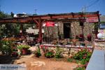 Taverna Eklekton Lefkos | Karpathos island | Dodecanese | Greece  Photo 001 - Photo JustGreece.com