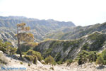 JustGreece.com nature onderweg to Olympos | Island of Karpathos Photo 003 - Foto van JustGreece.com