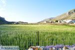 Avlonas near Olympos | Karpathos | Greece  Photo 10 - Photo JustGreece.com