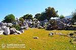 Prachtige nature - Cephalonia (Kefalonia) - Photo 43 - Photo JustGreece.com