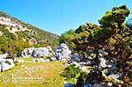 Beautiful landschap - Cephalonia (Kefalonia) - Photo 46 - Photo JustGreece.com