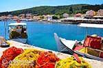 Fiskardo - Cephalonia (Kefalonia) - Photo 72 - Photo JustGreece.com