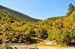 Berglandschap Ainos - Cephalonia (Kefalonia) - Photo 161 - Photo JustGreece.com