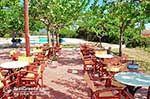 Drogarati - Cephalonia (Kefalonia) - Photo 185 - Photo JustGreece.com