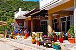 Katelios and the Katelios bay - Cephalonia (Kefalonia) - Photo 377 - Photo JustGreece.com