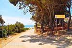 JustGreece.com Skala Kefalonia - Cephalonia (Kefalonia) - Photo 400 - Foto van JustGreece.com