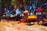 JustGreece.com Skala Kefalonia - Cephalonia (Kefalonia) - Photo 401 - Foto van JustGreece.com