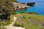 JustGreece.com Porto Skala Kefalonia - Cephalonia (Kefalonia) - Photo 421 - Foto van JustGreece.com