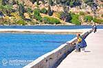 JustGreece.com Argostoli - Cephalonia (Kefalonia) - Photo 486 - Foto van JustGreece.com