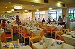Restaurant Hotel Mediterranee Lassi - Cephalonia (Kefalonia) - Photo 603 - Photo JustGreece.com