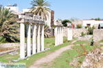 Archaeological ruins Kos town | Island of Kos | Greece Photo 4 - Photo JustGreece.com