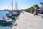 Kardamena Kos | Island of Kos | Greece Photo 1 - Photo JustGreece.com
