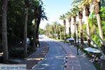 Kos town (Kos-town) | Island of Kos | Greece Photo 13 - Photo JustGreece.com