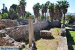 JustGreece.com Kos town (Kos-town) | Island of Kos | Greece Photo 31 - Foto van JustGreece.com
