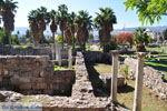 Kos town (Kos-town) | Island of Kos | Greece Photo 33 - Photo JustGreece.com